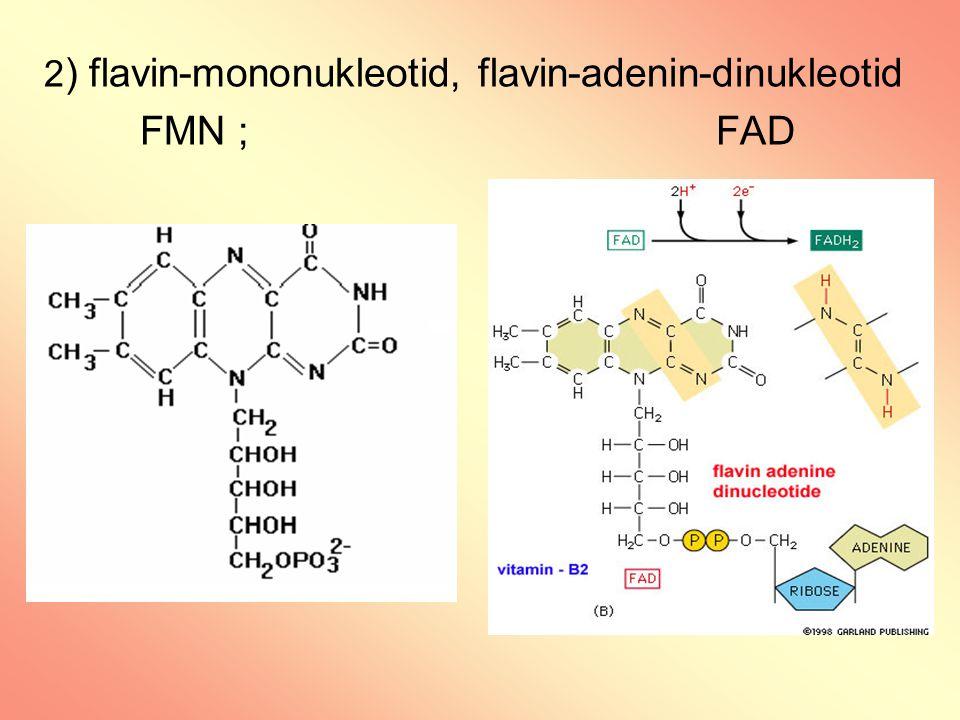2) flavin-mononukleotid, flavin-adenin-dinukleotid