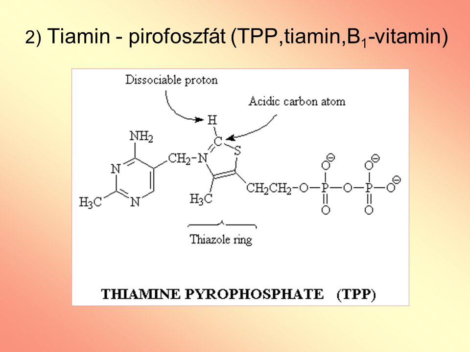 2) Tiamin - pirofoszfát (TPP,tiamin,B1-vitamin)
