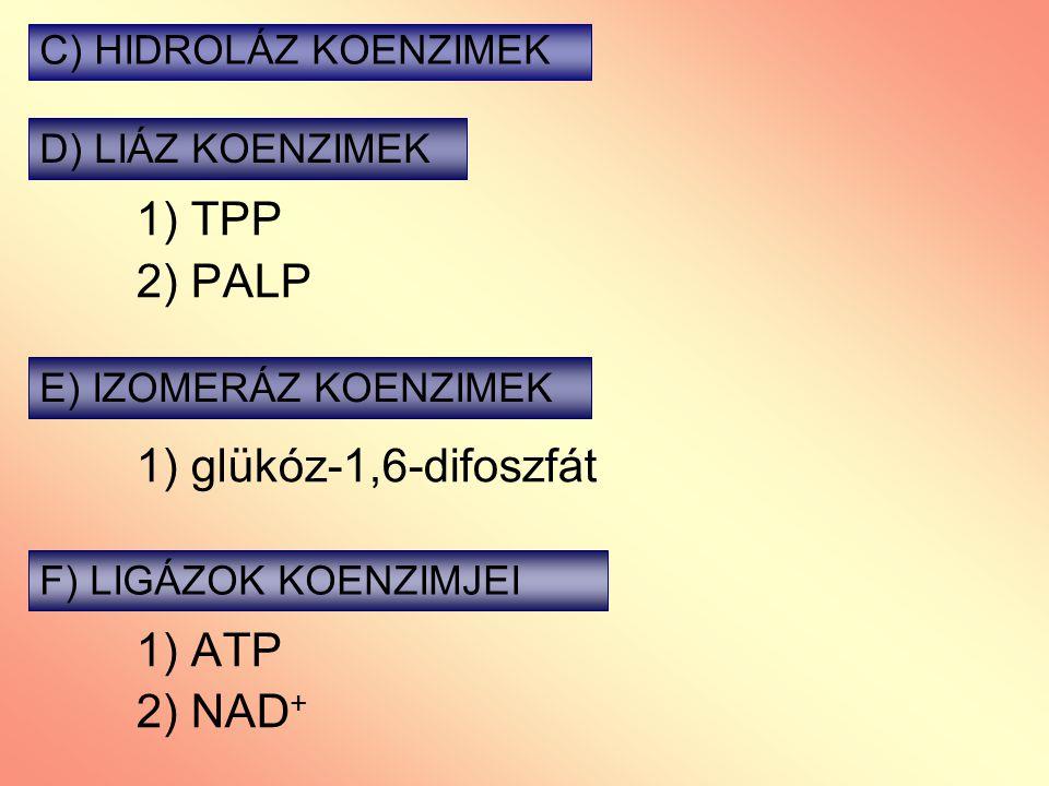 1) TPP 2) PALP 1) glükóz-1,6-difoszfát 1) ATP 2) NAD+