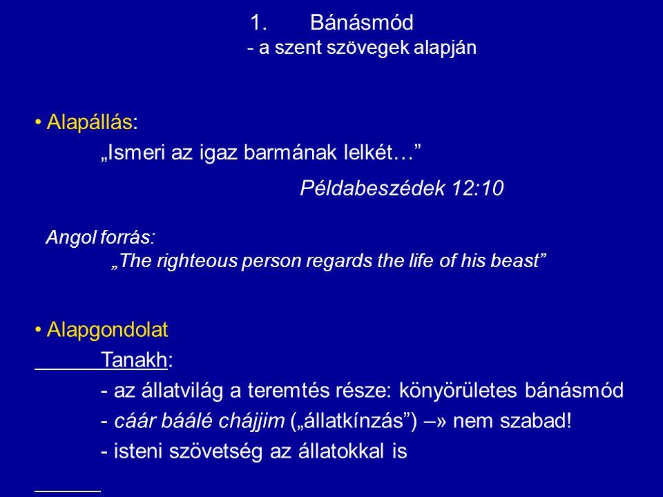 Bánásmód - a szent szövegek alapján