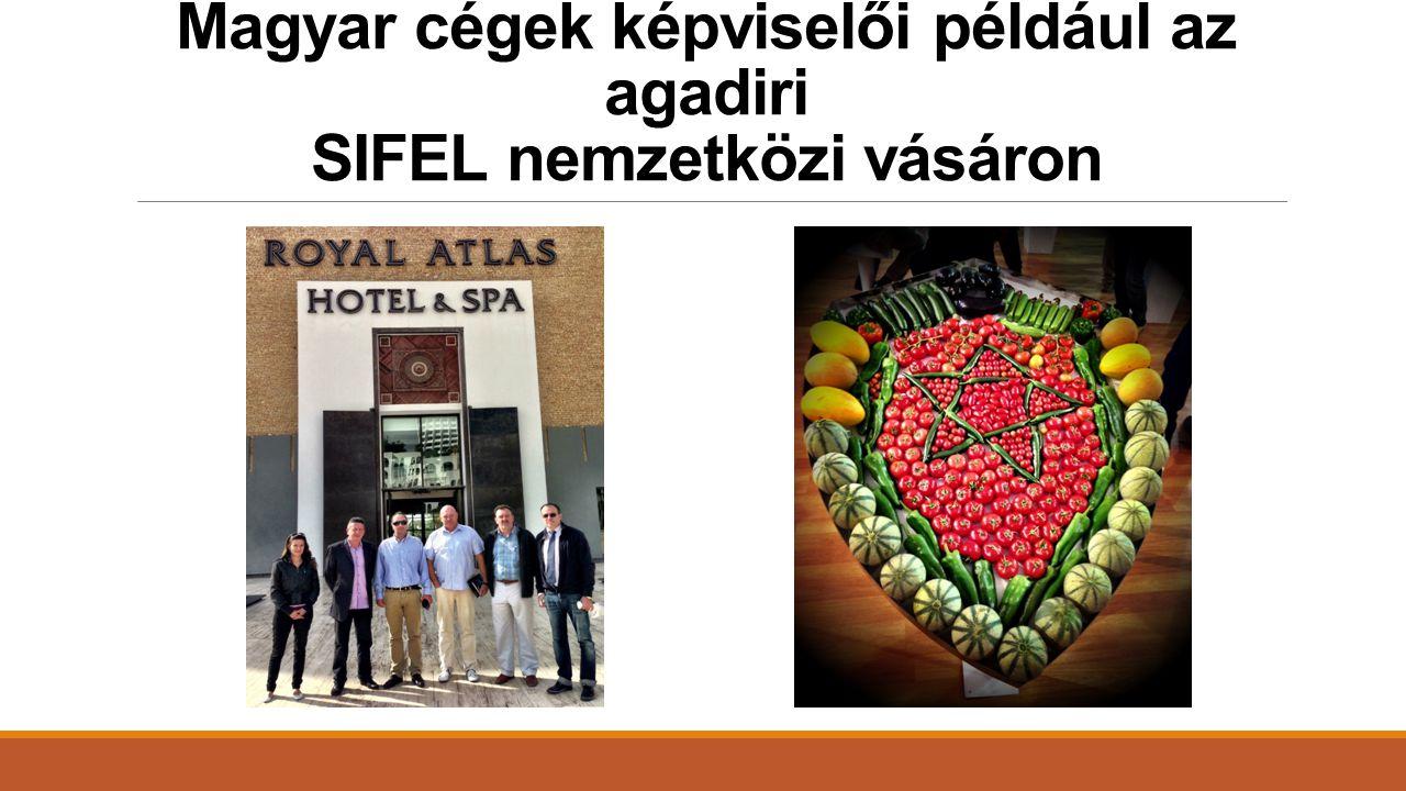Magyar cégek képviselői például az agadiri SIFEL nemzetközi vásáron