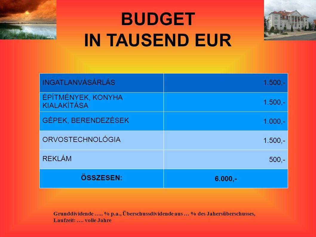 BUDGET IN TAUSEND EUR INGATLANVÁSÁRLÁS 1.500,-