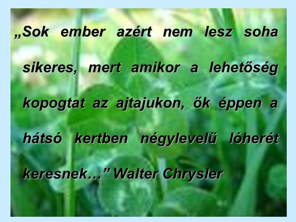 """""""Sok ember azért nem lesz soha sikeres, mert amikor a lehetőség kopogtat az ajtajukon, ők éppen a hátsó kertben négylevelű lóherét keresnek… Walter Chrysler"""