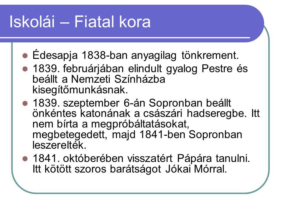 Iskolái – Fiatal kora Édesapja 1838-ban anyagilag tönkrement.