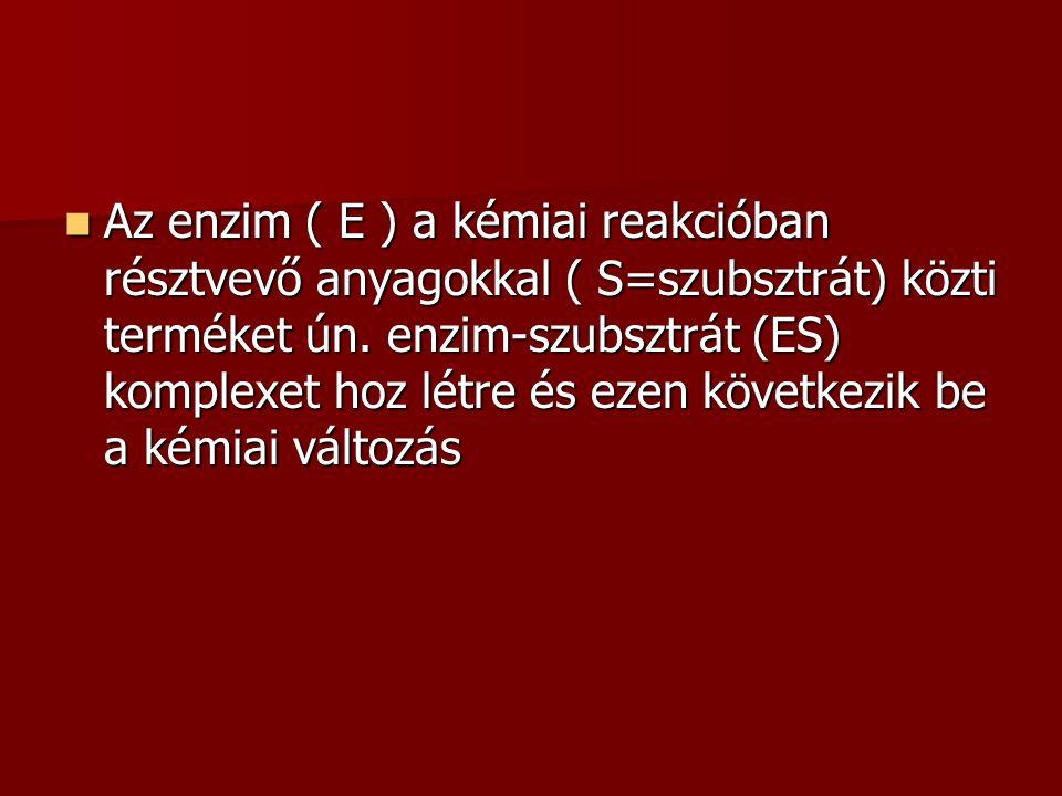 Az enzim ( E ) a kémiai reakcióban résztvevő anyagokkal ( S=szubsztrát) közti terméket ún.