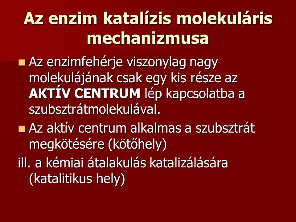 Az enzim katalízis molekuláris mechanizmusa