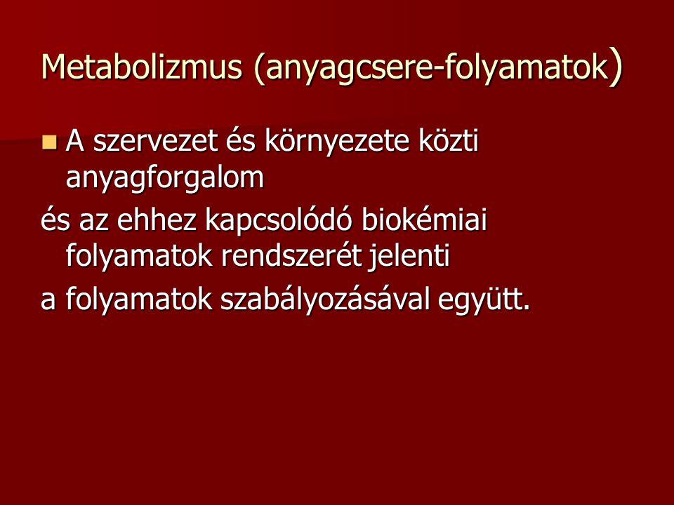 Metabolizmus (anyagcsere-folyamatok)