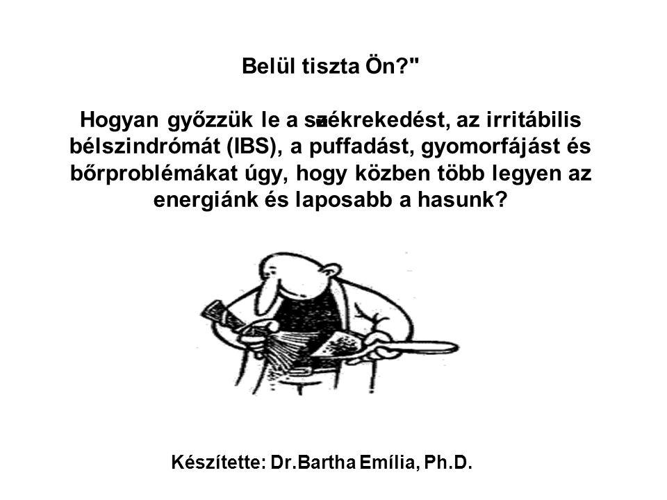 Készítette: Dr.Bartha Emília, Ph.D.