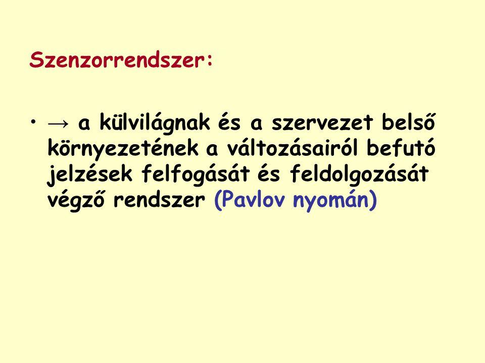 Szenzorrendszer: