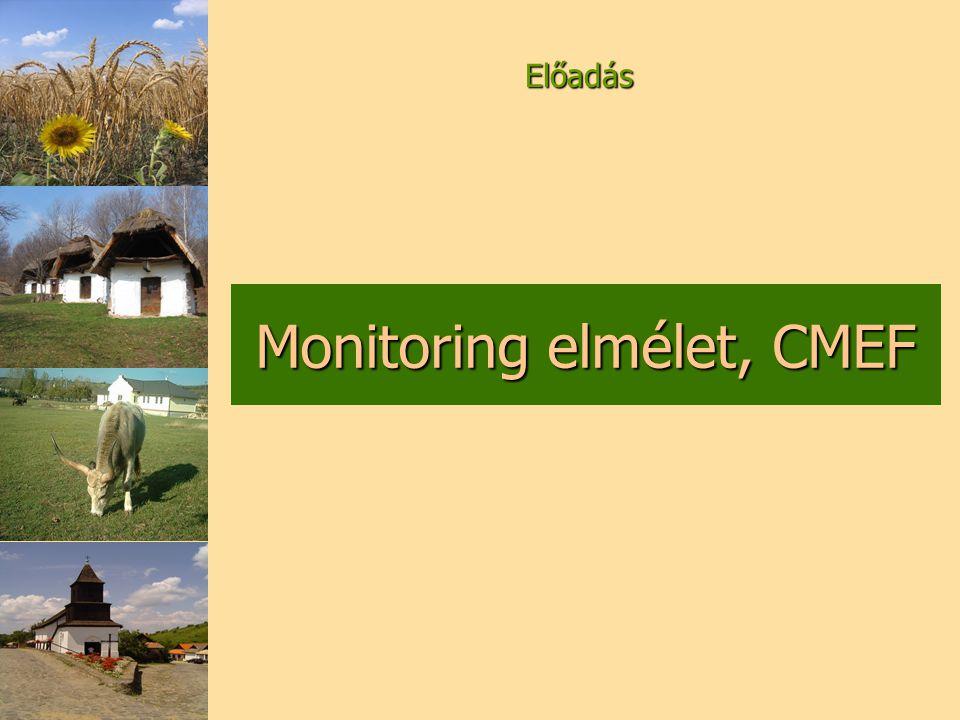 Monitoring elmélet, CMEF