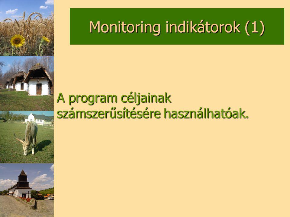 A program céljainak számszerűsítésére használhatóak.