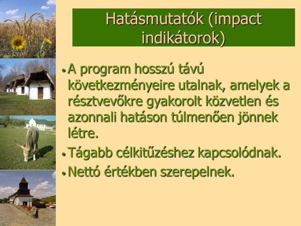 Hatásmutatók (impact indikátorok)