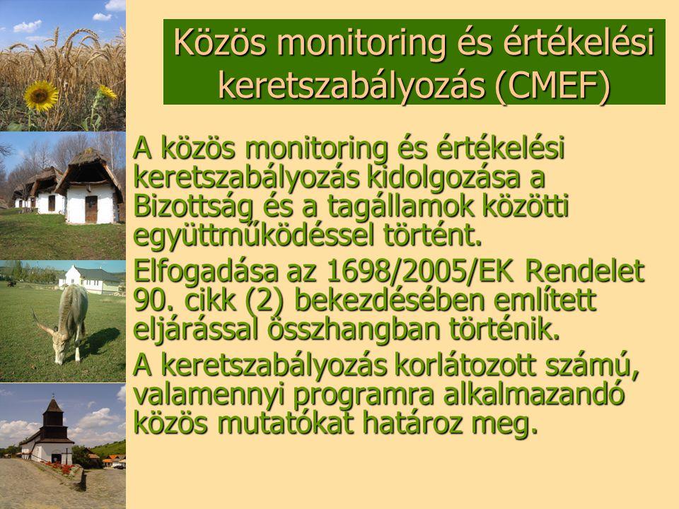 Közös monitoring és értékelési keretszabályozás (CMEF)