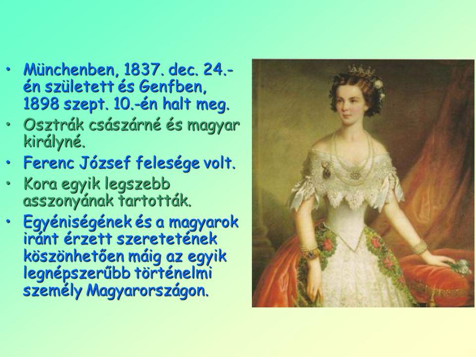 Münchenben, 1837. dec. 24. -én született és Genfben, 1898 szept. 10