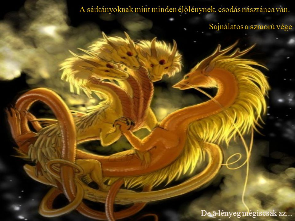 A sárkányoknak mint minden élőlénynek, csodás násztánca van.