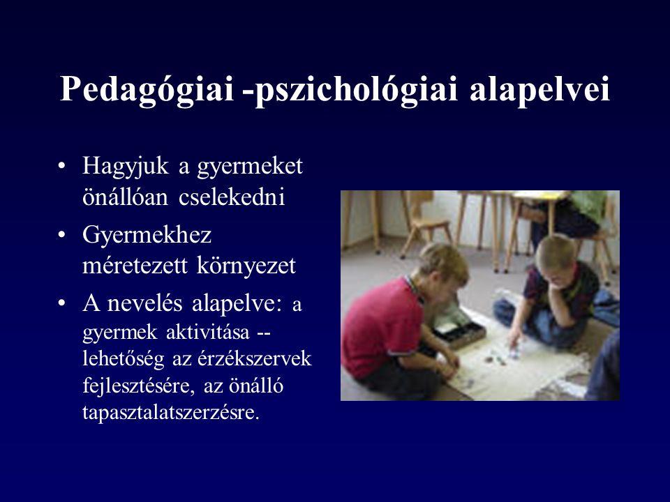 Pedagógiai -pszichológiai alapelvei