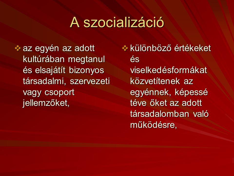 A szocializáció az egyén az adott kultúrában megtanul és elsajátít bizonyos társadalmi, szervezeti vagy csoport jellemzőket,