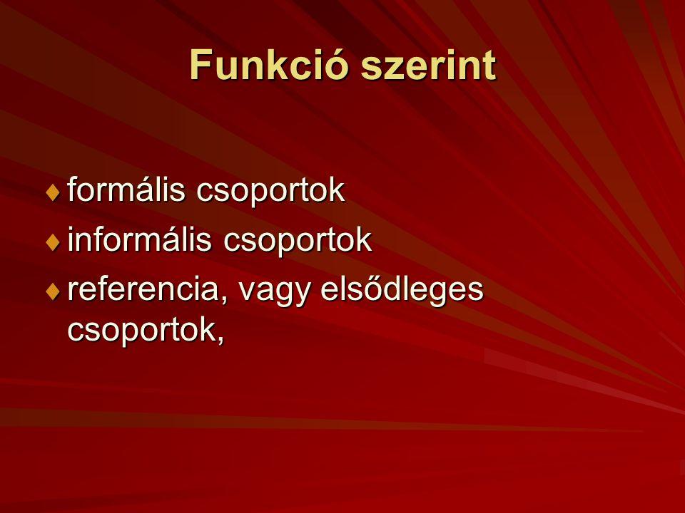 Funkció szerint formális csoportok informális csoportok