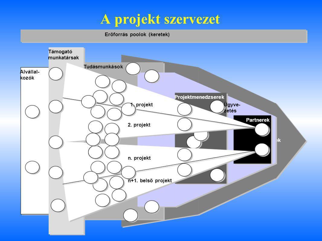 A projekt szervezet Erőforrás poolok (keretek) Támogató munkatársak