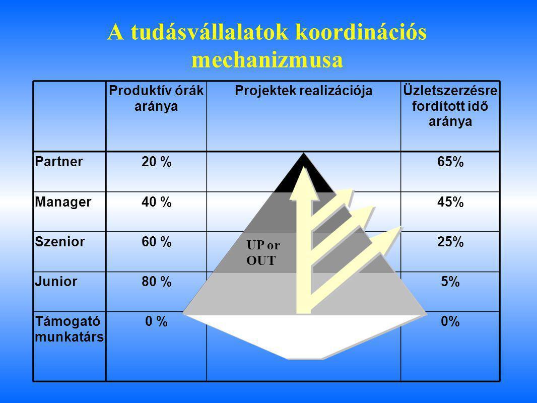 A tudásvállalatok koordinációs mechanizmusa