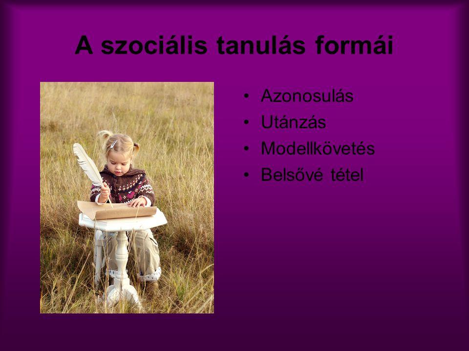 A szociális tanulás formái