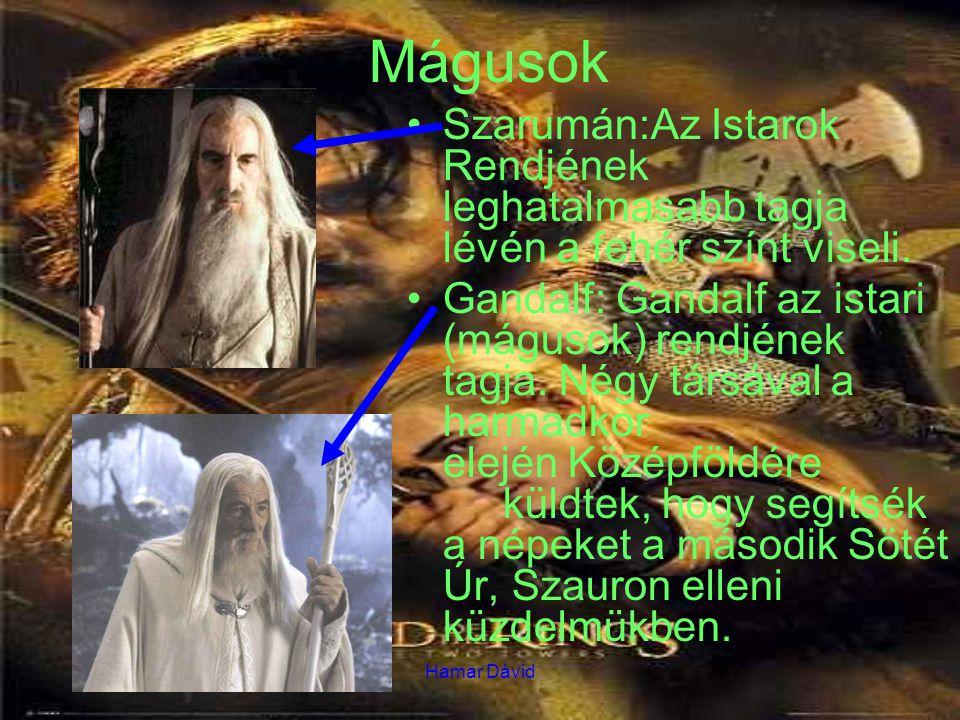 Mágusok Szarumán:Az Istarok Rendjének leghatalmasabb tagja lévén a fehér színt viseli.
