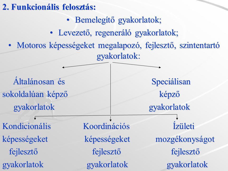 2. Funkcionális felosztás: Bemelegítő gyakorlatok;