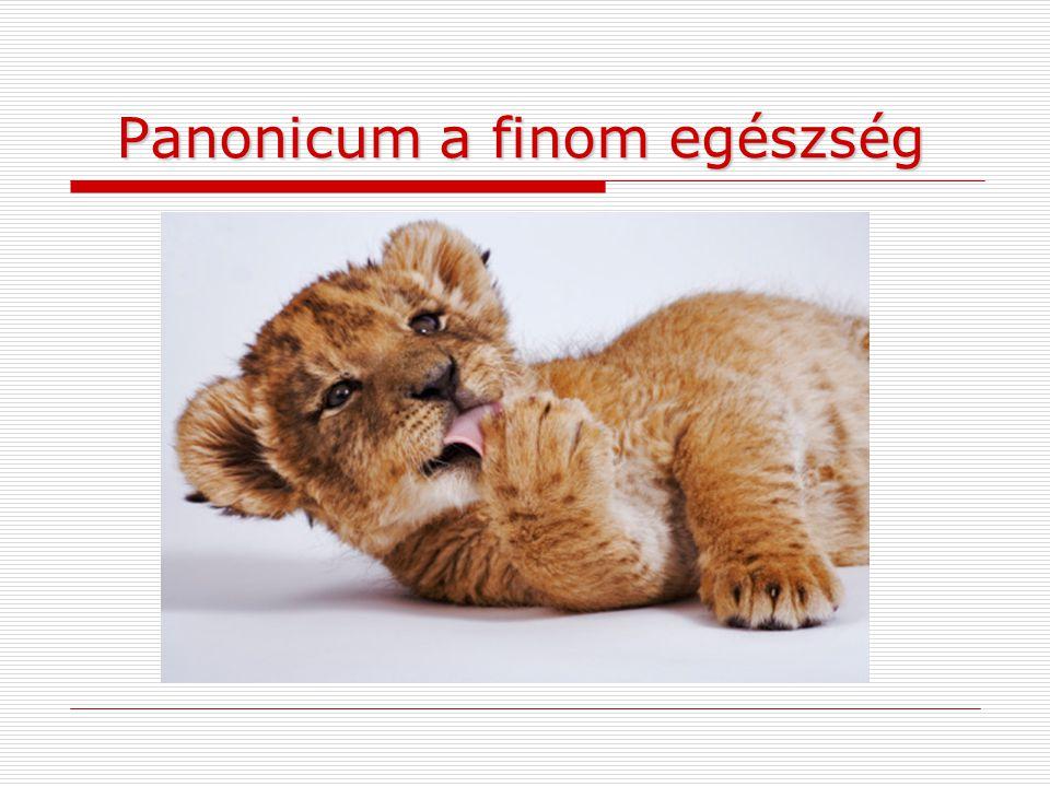 Panonicum a finom egészség