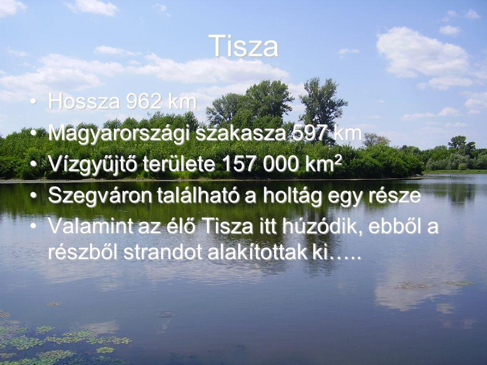 Tisza Hossza 962 km Magyarországi szakasza 597 km