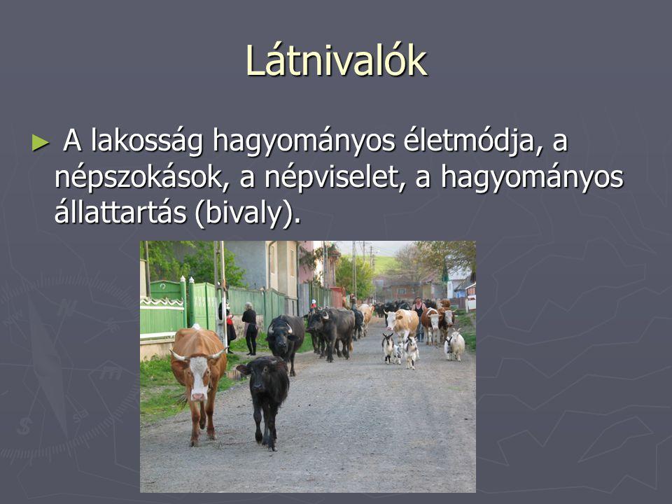 Látnivalók A lakosság hagyományos életmódja, a népszokások, a népviselet, a hagyományos állattartás (bivaly).