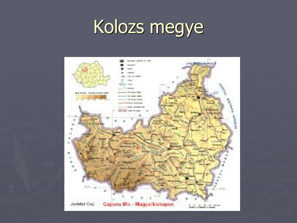 Kolozs megye