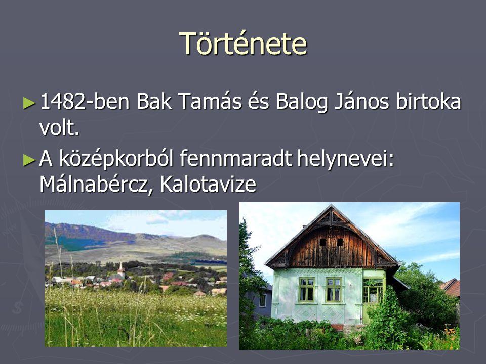 Története 1482-ben Bak Tamás és Balog János birtoka volt.