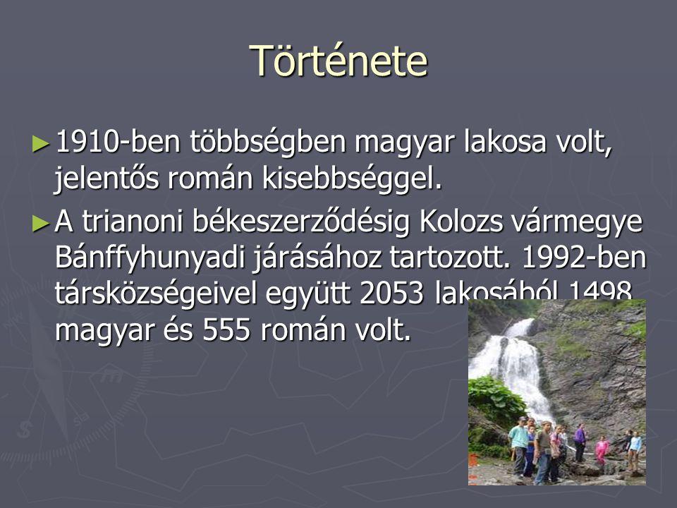 Története 1910-ben többségben magyar lakosa volt, jelentős román kisebbséggel.