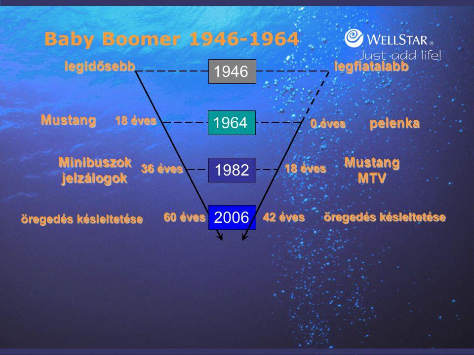Baby Boomer 1946-1964 1946 1964 1982 2006 legidősebb legfiatalabb