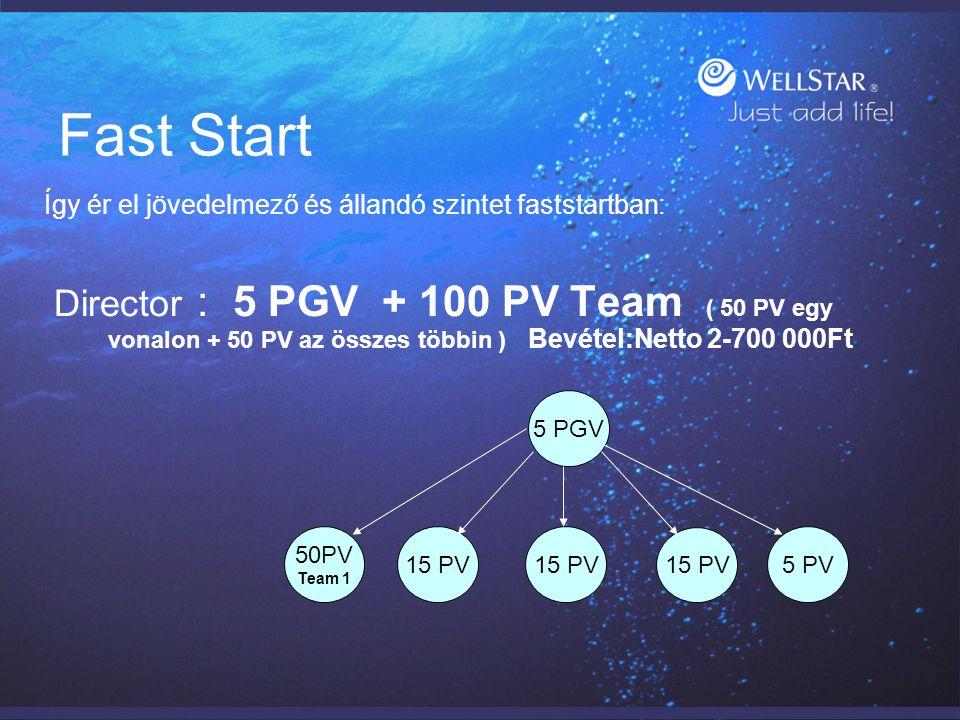 Fast Start Így ér el jövedelmező és állandó szintet faststartban: