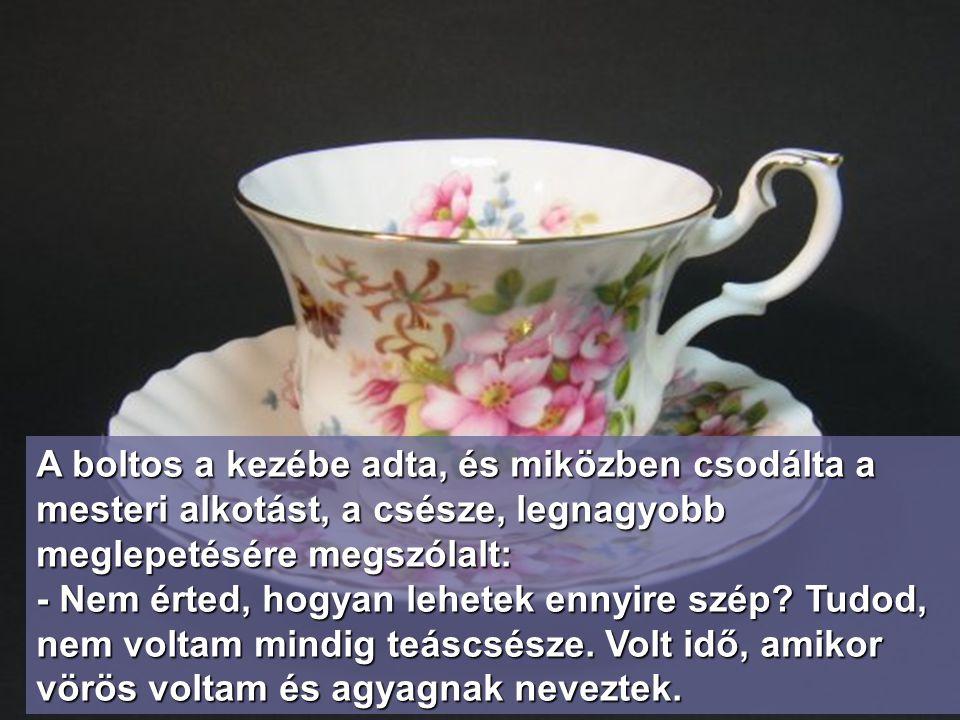 A boltos a kezébe adta, és miközben csodálta a mesteri alkotást, a csésze, legnagyobb meglepetésére megszólalt: - Nem érted, hogyan lehetek ennyire szép.