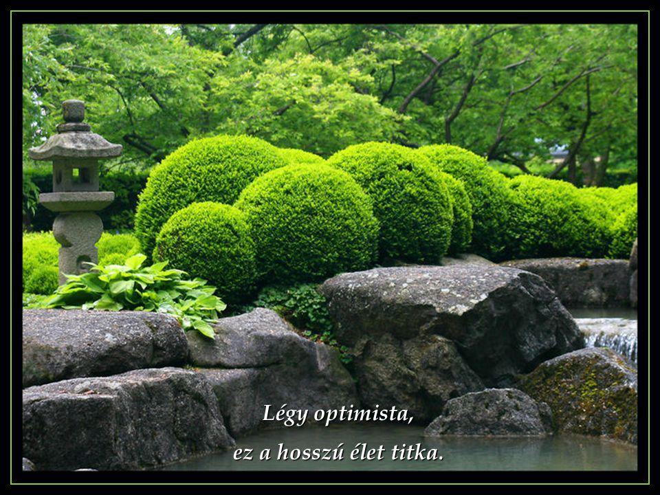 Légy optimista, ez a hosszú élet titka.