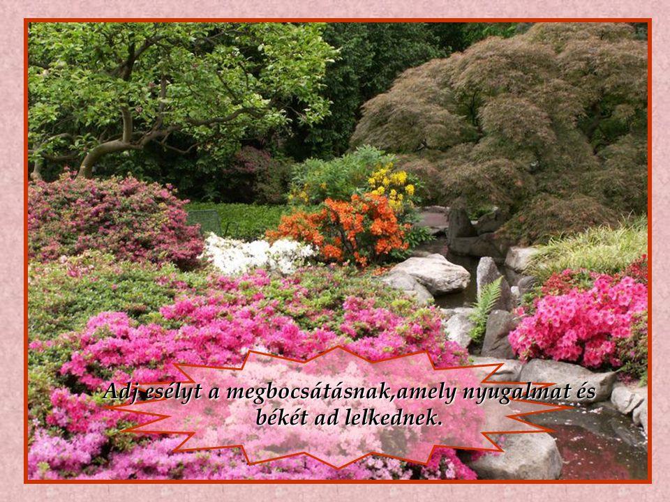 Adj esélyt a megbocsátásnak,amely nyugalmat és békét ad lelkednek.