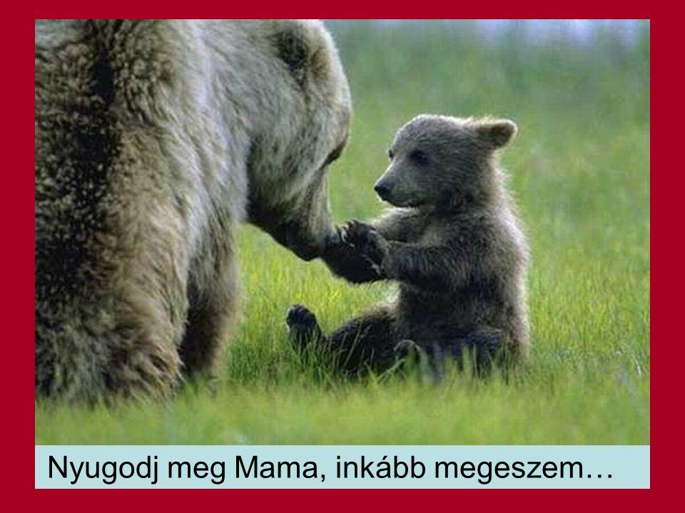 Nyugodj meg Mama, inkább megeszem…