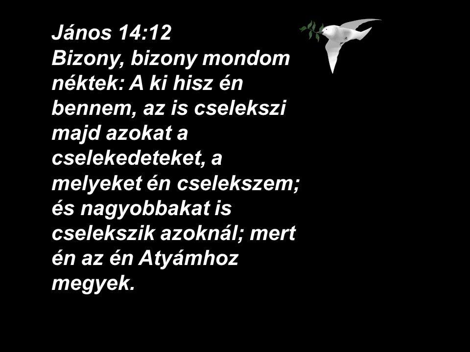 János 14:12 Bizony, bizony mondom néktek: A ki hisz én bennem, az is cselekszi majd azokat a cselekedeteket, a melyeket én cselekszem; és nagyobbakat is cselekszik azoknál; mert én az én Atyámhoz megyek.
