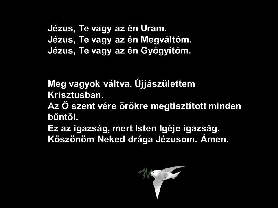 Jézus, Te vagy az én Uram. Jézus, Te vagy az én Megváltóm