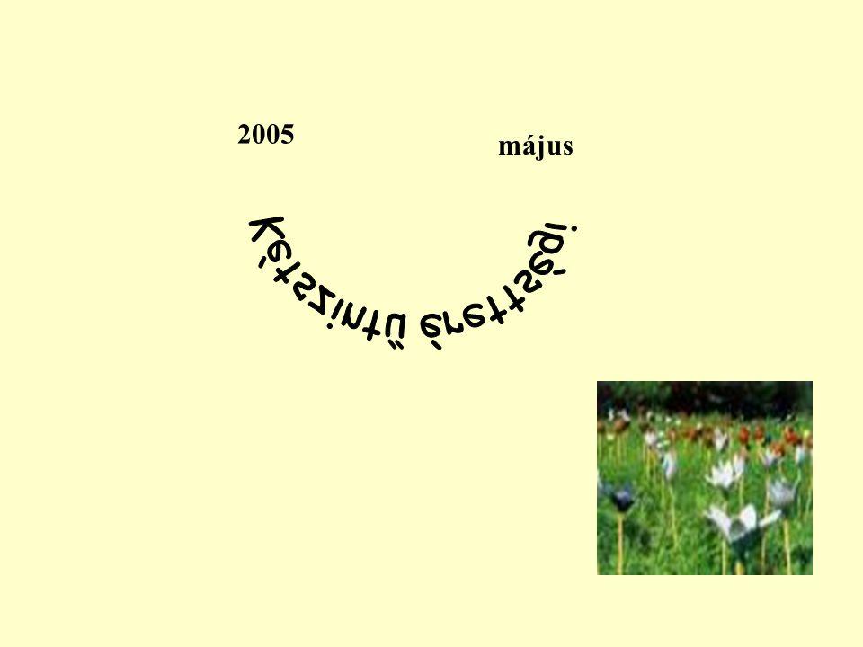 2005 Kétszintű érettségi május
