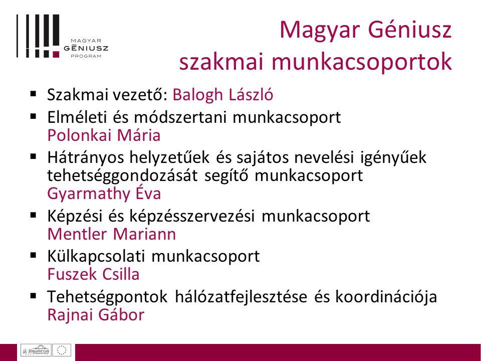 Magyar Géniusz szakmai munkacsoportok