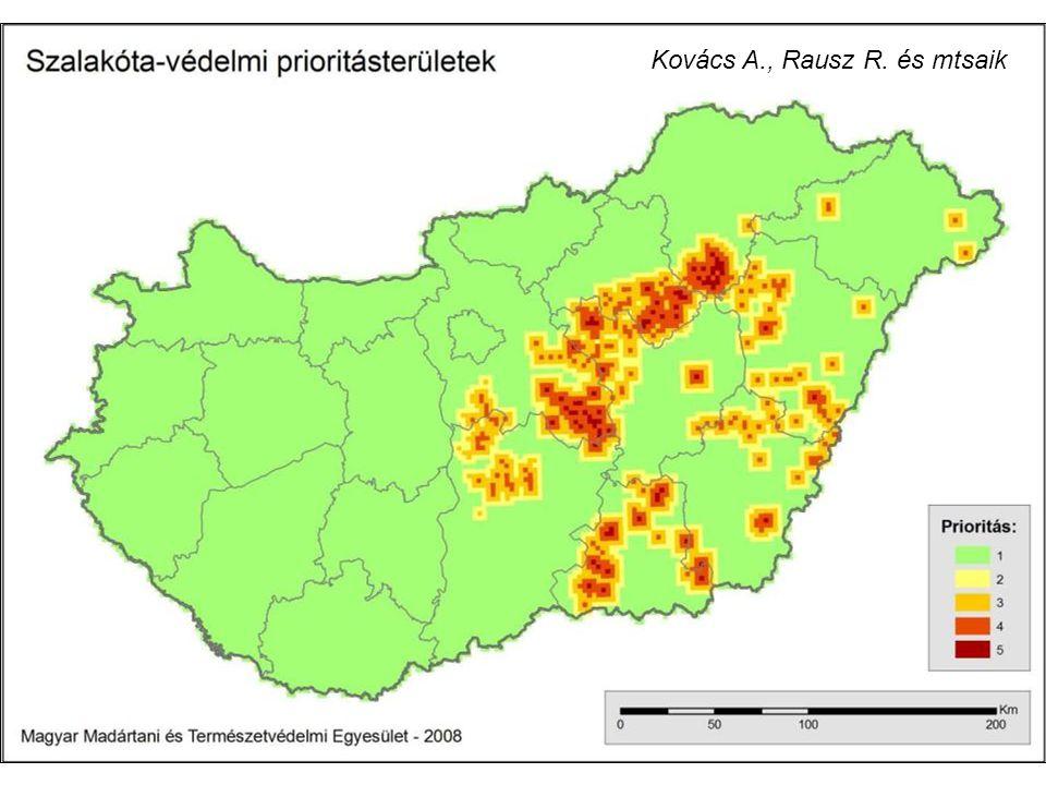 Kovács A., Rausz R. és mtsaik