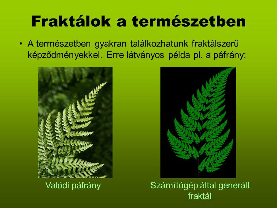 Fraktálok a természetben