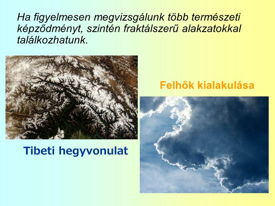 Ha figyelmesen megvizsgálunk több természeti képződményt, szintén fraktálszerű alakzatokkal találkozhatunk.