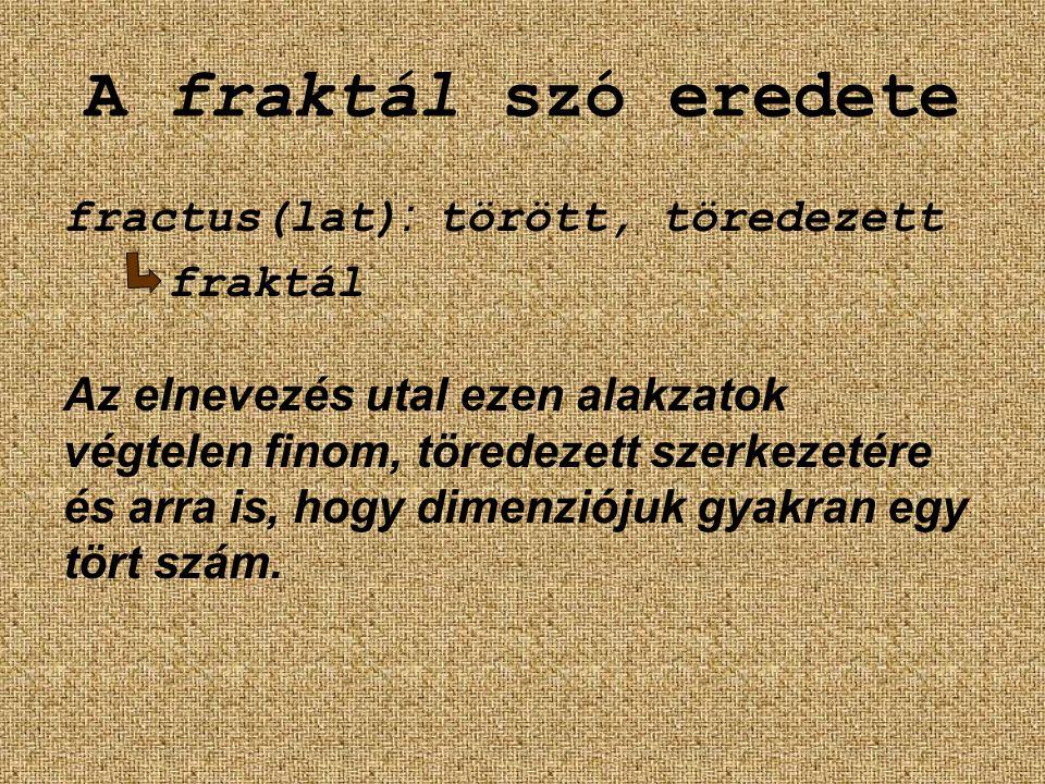 A fraktál szó eredete fractus(lat): törött, töredezett fraktál