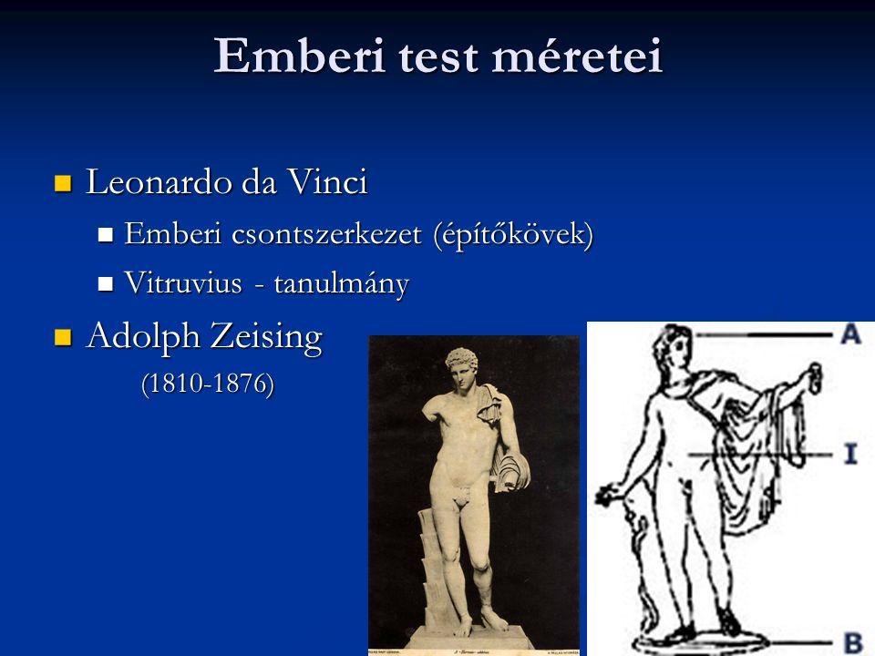 Emberi test méretei Leonardo da Vinci Adolph Zeising