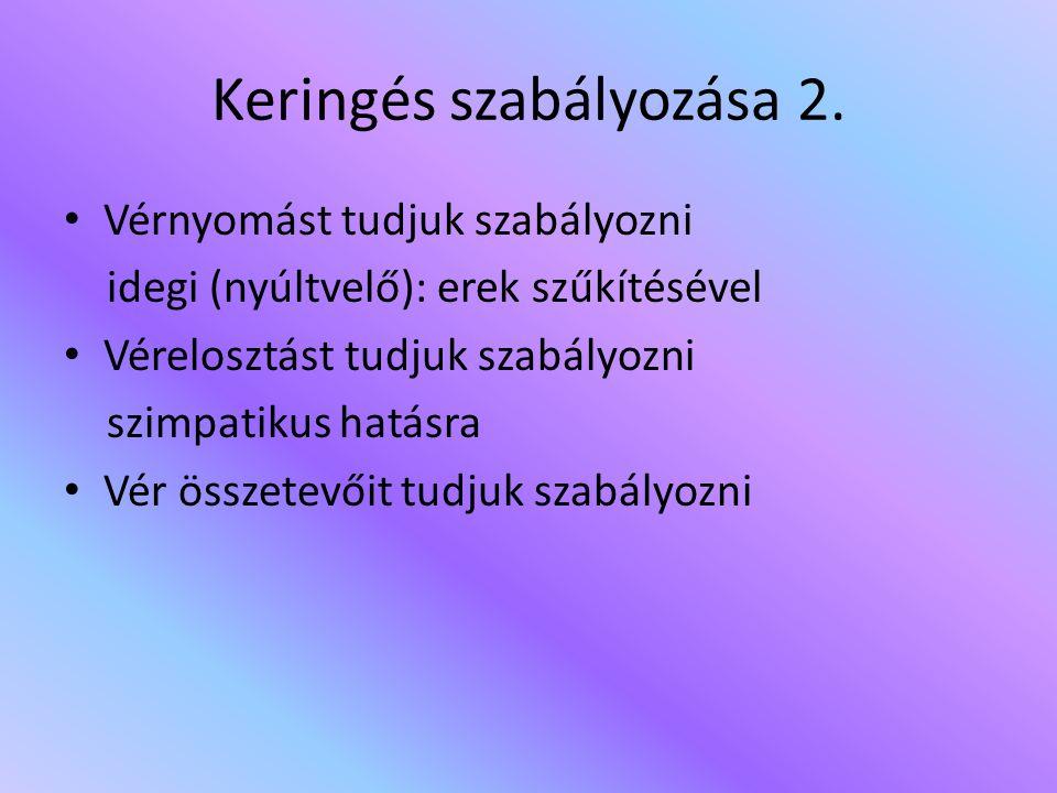 Keringés szabályozása 2.