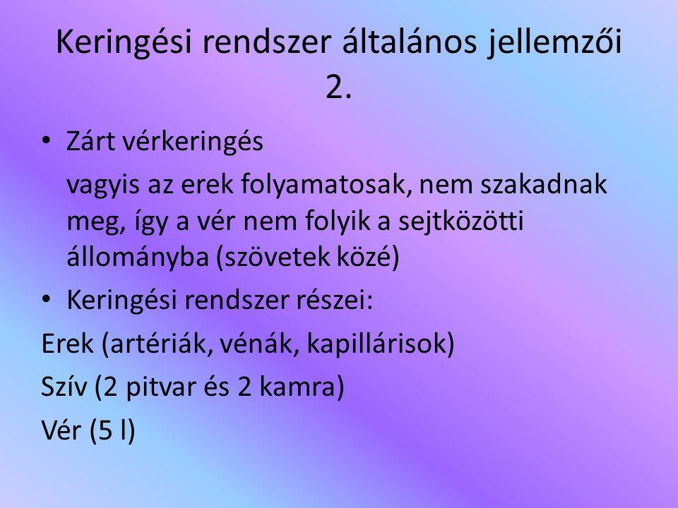 Keringési rendszer általános jellemzői 2.